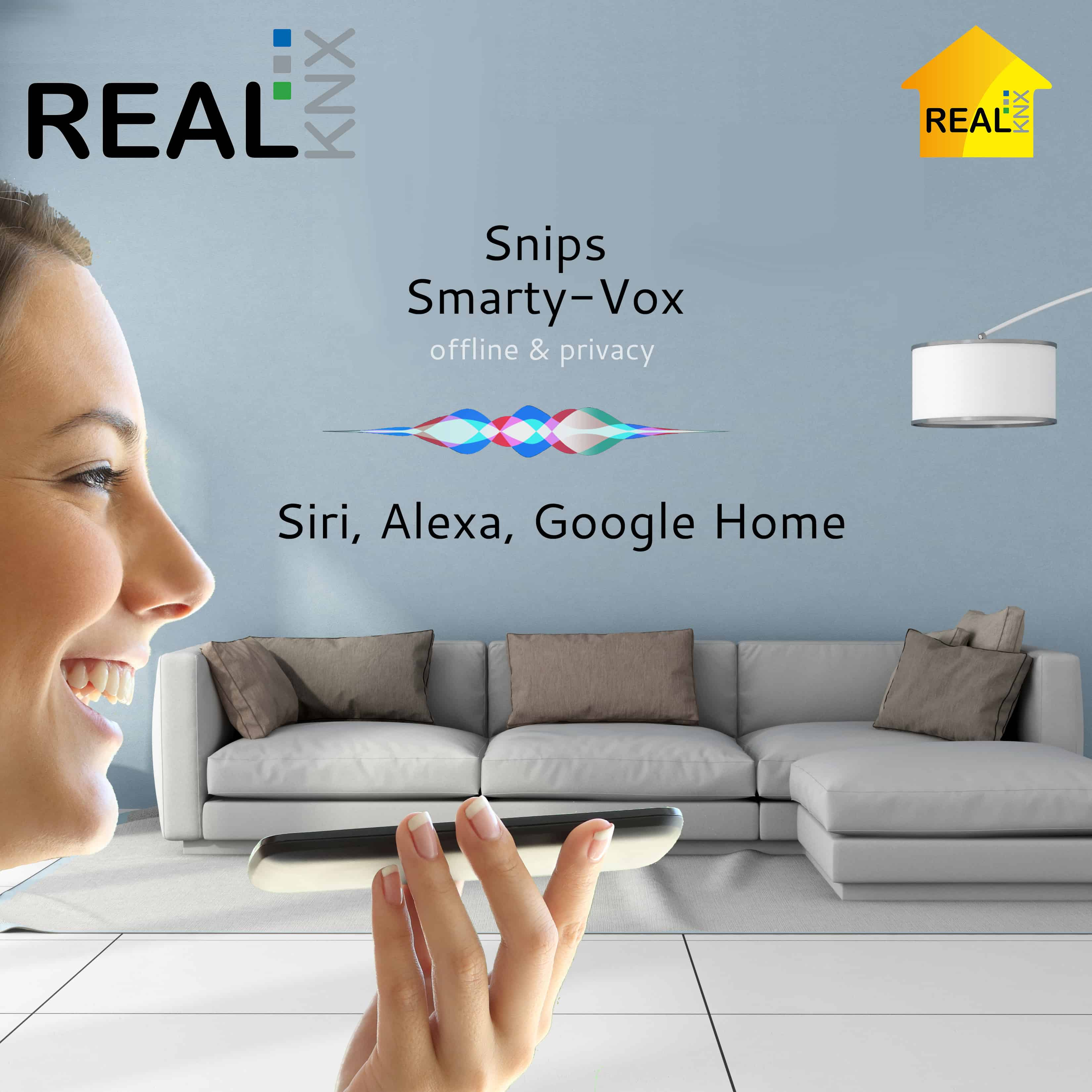 Realknx Air Voice Control With Snips Siri Alexa And Google Proknx Activated Switch Vox Kit